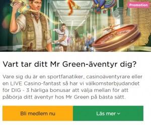 Klicka här för att ta del av vad som gör Mr Green mest nöjdast bland kunder!
